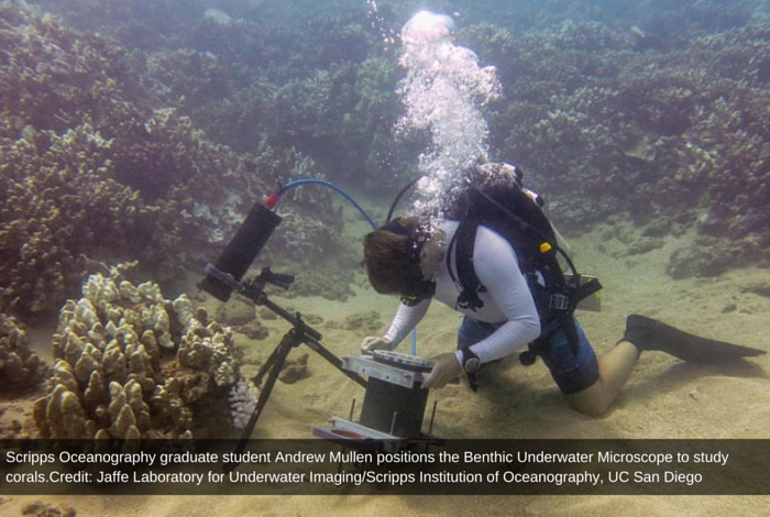 Newly Discovered Microscope For Amazing Underwater World Study First Time In Science History