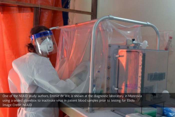 People May Cope Up With Ebola If They Are Co Infected With The Malaria Parasites: Research Study