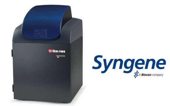 Syngene Launches new mini Multi Application Imaging System
