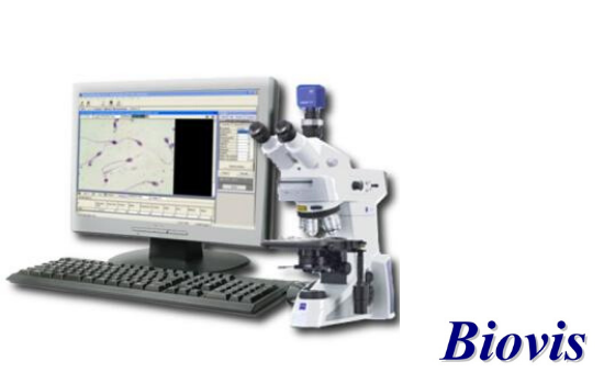 Biovis PSA 2000 for Particle Size and Shape analysis