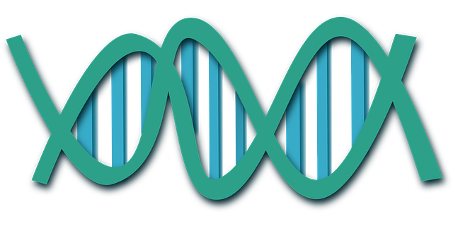 New way to deal with DNA data stockpiling makes framework progressively powerful, adaptable