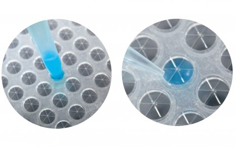 Sterile 96-Well Plate Seal for Cell Culturing by BioChromato