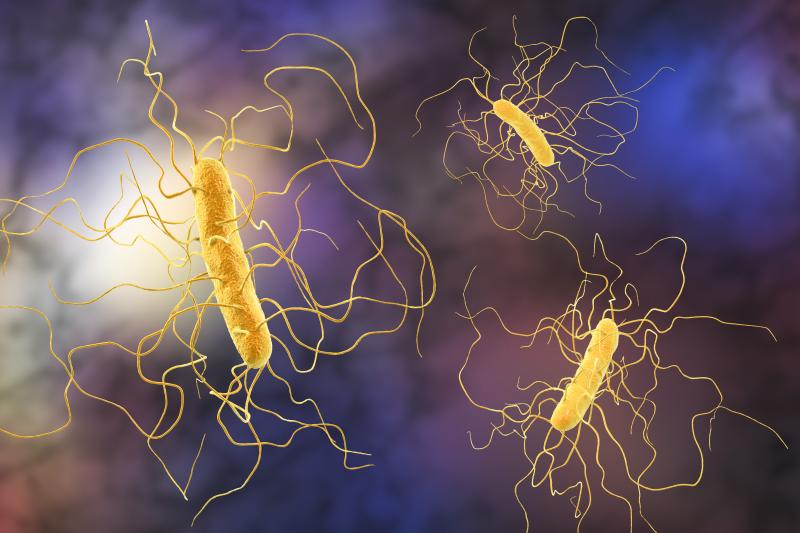 Inflammation may add to the determination of C. diff disease, shows study