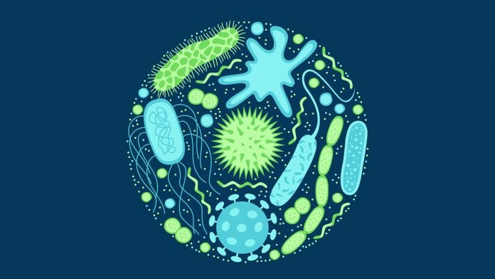 Scientists gives better comprehension of how antibiotic resistance emerges