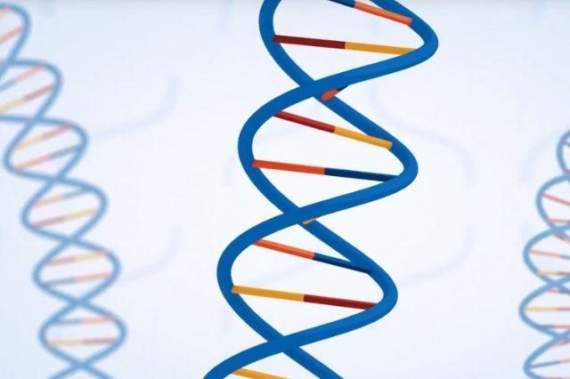 New hereditarily encoded sensor recognizes drugs of abuse