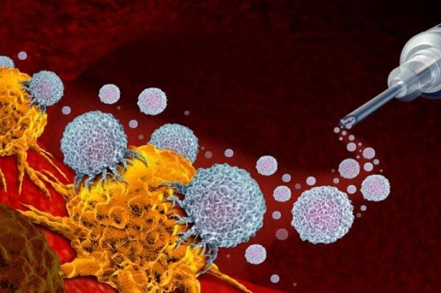 Bacteria residing within inside tumor cells can support malignant growth immunotherapy