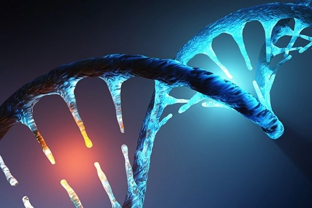 Scientists use genetics to recognize likely drugs for early administration of COVID-19