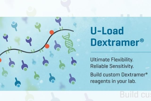 The Launch of U-Load Dextramer® with Peptide Receptive MHC I and MHC II Monomers Greatly Expands Flexibility while Ensuring Reliable Sensitivity in Exploring Diversity of Cellular Immune Responses