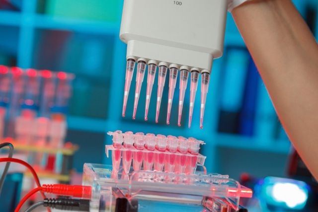 Interesting Facts about Electrophoresis