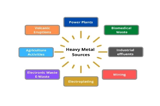 Environment Research & Heavy Metals: A Toxic  Relationship