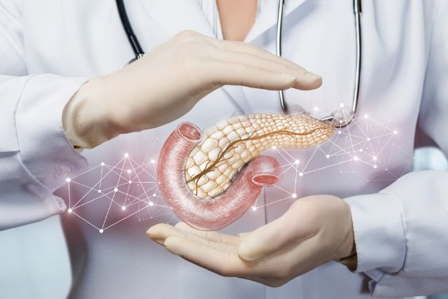 Researchers develop another approach to grow little pancreas replicas