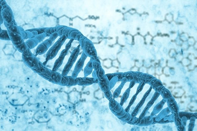Magnetic Bead Based Nucleic Acid Extraction: Machines as per your need