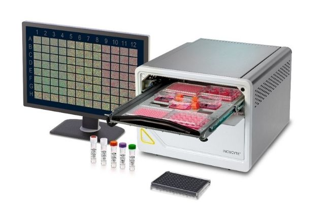 Sartorius Unveils LIVECell, a Deep-Learning Dataset for Label-Free, Quantitative Cell Segmentation in Nature Methods